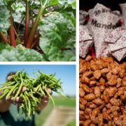 Wir essen sie täglich und doch können einige Lebensmittel lebensgefährlich oder gar tödlich sein. (Foto)