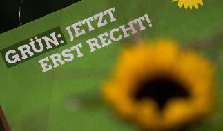Bündnis 90 / Die Grünen hoffen bei der Bundestagswahl 2017 auf ein positiveres Ergebnis als bei der Wahl 2013. (Foto)
