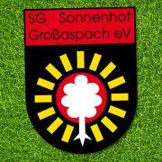 Chemnitz patzt gegen SG Sonnenhof - 2:0 (Foto)