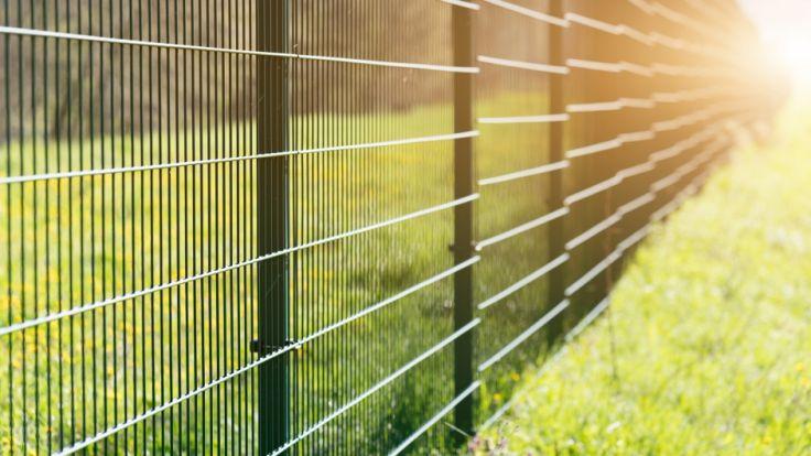 Um ein Gymnasium in berlin-Tiergraten wurde ein Zaun errichtet. Der 1,80 Meter hohe Liebestöter, soll Prostituierte vom Schulhof fernhalten. (Symbolbild) (Foto)