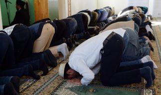 Ein Mann hat in einer Berliner Moschee fünf Polizisten angegriffen und verletzt. (Foto)