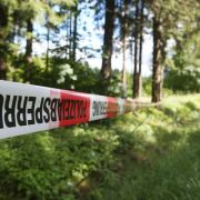Gruselfund! Spaziergänger entdecken skelettierte Leiche in Wald (Foto)