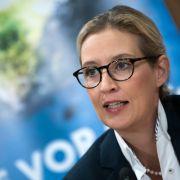AfD-Politikerin will Merkel vor Gericht ziehen (Foto)