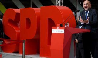 Wie peinlich! Die SPD feiert Martin Schulz' Erfolg schon vor dem TV-Duell. (Foto)