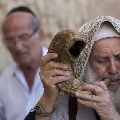 Shana towa! Jüdisches Neujahr läutet das Jahr 5778 ein (Foto)