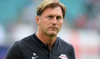 RB-Leipzig-Trainer Hasenhüttl sieht seine Mannschaft nicht in der Favoritenrolle gegen Hamburg. (Foto)