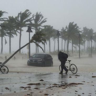 15 Tote, Plünderungen und Zerstörung! 5,7 Millionen Menschen ohne Strom (Foto)