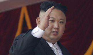 Neue Sanktionen schränken Nordkorea weiter ein. Das scheint Deutschland jedoch nicht zu stören. (Foto)