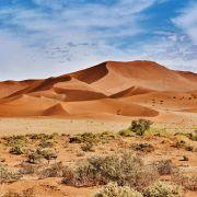 Klima-Schock! Sahara-Wüste in Deutschland möglich (Foto)