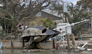 Das Wrack eines Segelbootes liegt nach dem Durchzug des Hurrikans Irma am 11.09.2017 in Miami (USA) auf einer Pier. (Foto)