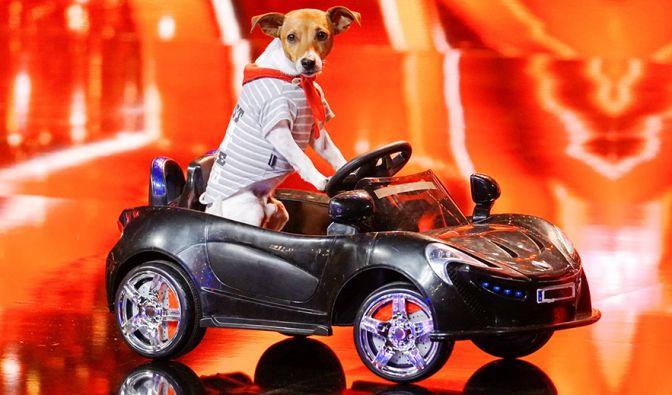 """""""Das Supertalent"""" 2017 als Wiederholung bei TV Now"""
