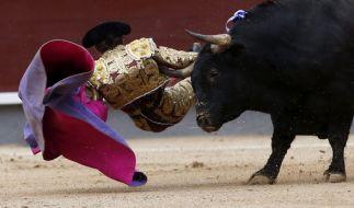 Stierkampf kann für die Stierkämpfer tödlich enden. (Foto)