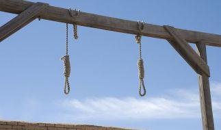 Im Iran wurde ein Vergewaltiger und Mörder zum Tod durch den Strang verurteilt (Symbolbild). (Foto)