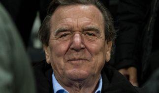 Altkanzler Gerhard Schröder soll eine neue Freundin haben. (Foto)