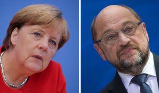 Kurz vor der Bundestagswahl googlen die Deutschen auch nach den Spitzenkandidaten der Parteien. (Foto)