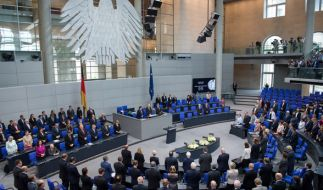 Bundestagswahl 2017: Mehr Abgeordnete bedeuten auch mehr Kosten. (Foto)
