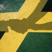 So extrem unterscheiden sich die Jamaika-Parteien (Foto)