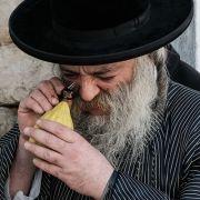 Alles zu Ablauf und Bräuchen des jüdischen Laubhüttenfestes (Foto)