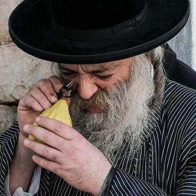 Das sind Bräuche,Ablauf und Rezepte zum jüdischen Laubhüttenfest (Foto)
