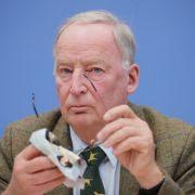 """""""Größenwahn!"""" AfD-Chef hetzt gegen Frauke Petry (Foto)"""