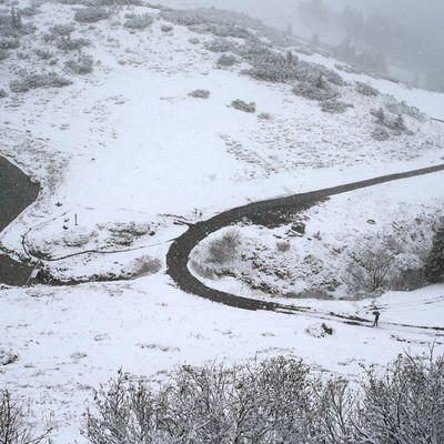 Der 1. Schnee kommt - Es wird frostig! (Foto)
