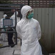DIESER Virus könnte eine weltweite Seuche auslösen (Foto)
