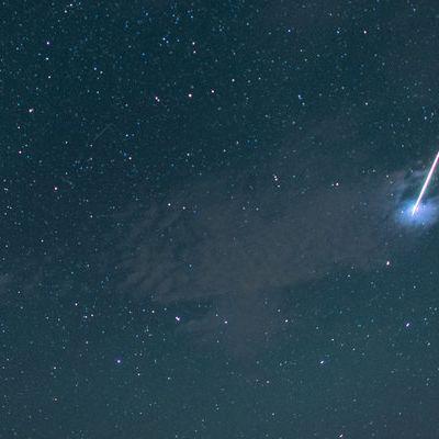 Magische Leoniden erleuchten wieder den Nachthimmel (Foto)