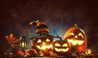 Schaurig schöne Kürbisse an Halloween. (Foto)