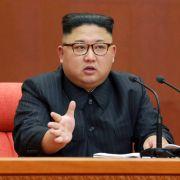 Österreich druckt Pässe für Nordkorea - und gibt diese weiter (Foto)