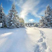 Schnee an Heiligabend? So wird der Winter (Foto)