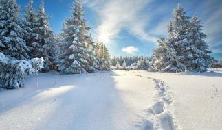 Gibt es in Deutschland 2017 weiße Weihnachten? (Foto)