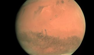 Boriska Kipriyanovich behauptet vom Mars zu stammen. (Foto)