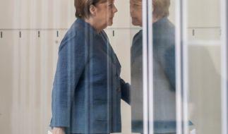 Angela Merkel auf dem Weg zur nächsten Verhandlungsrunde. Langsam kommt Schwung in die Sondierungsgespräche. (Foto)