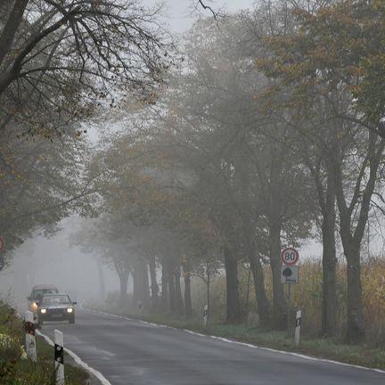 Frost und Nebel! So ungemütlich wird das Wetter in Deutschland (Foto)