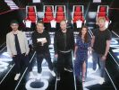 """The Voice of Germany"" 2017 als Pro7-Wiederholung"