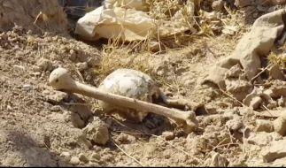 Im Nordirak sind mehrere Massengräber entdeckt worden. (Foto)
