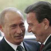 Schröder froh über Wladimir Putin - und sieht Neuwahlen kommen (Foto)