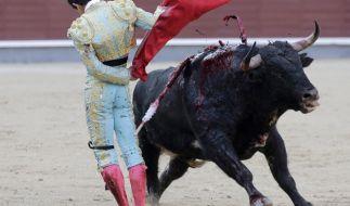Luis David Adame bei einem Stierkampf im Mai 2016. (Foto)