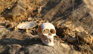 Kannibale Gregory Scott Hale schlief erst mit seinem Opfer, dann tötete und verspeiste er es. (Foto)