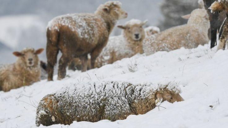 Zum 1. Advent könnte in einigen Regionen Schnee fallen. (Foto)
