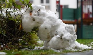 Mit dem Schneemann bauen will es diese Woche nicht so recht klappen. (Foto)