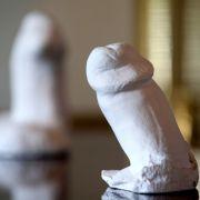 Lümmel-Leiden! Die krassesten Penis-Meldungen 2017 (Foto)