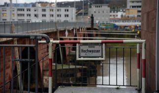 In Trier sorgte das Tauwetter für steigende Pegelstände. (Foto)