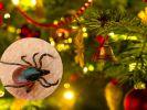 Zecken im Weihnachtsbaum 2017