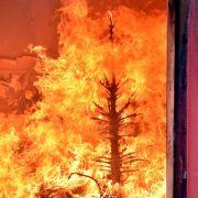 Wann zahlt die Versicherung für einen Brand an Weihnachten? (Foto)