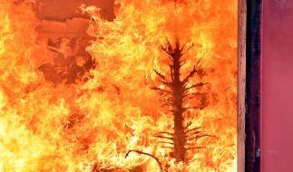 Wenn der Weihnachtsbaum die Wohnung in Brand setzt, kommt die Hausratsversicherung für die Schäden auf. (Foto)