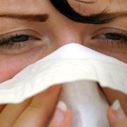 Achtung Allergiker! Diese Pollen haben jetzt Saison (Foto)