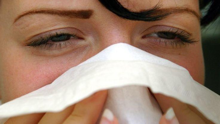 Pollen machen Heuschnupfen-Allergikern bereits im Januar zu schaffen. (Foto)