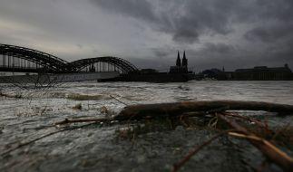 Die Hochwasserlag bleibt kritisch. (Foto)