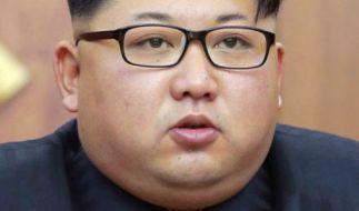 Kim Jong-un besuchtezwei Schulen in der Schweiz - mit mäßigem Erfolg. (Foto)